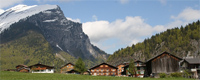 bwald-berge.jpg